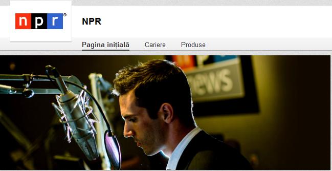 NPR_Privire_de_ansamblu_LinkedIn